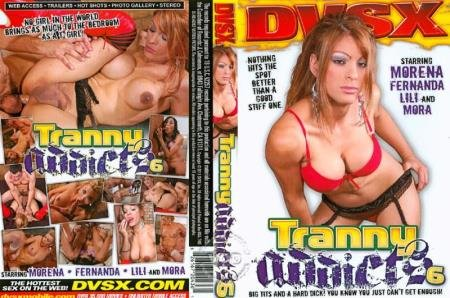 Tranny Addicts 6 (Fernanda, Julian, Christian, Troy, Mora, Morena)  [SD] DVSX